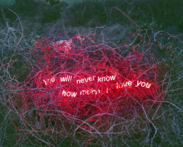 Jung LEE (*1972, South Korea): You Will Never Know How Much I Love You – Christophe Guye Galerie