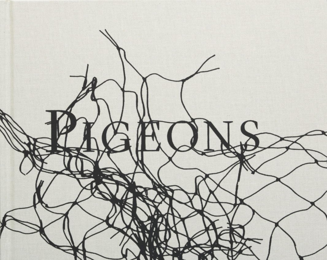 Stephen Gill – Pigeons – signed